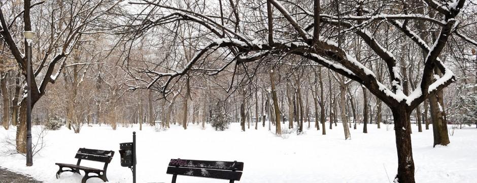 Parkbank im Schnee